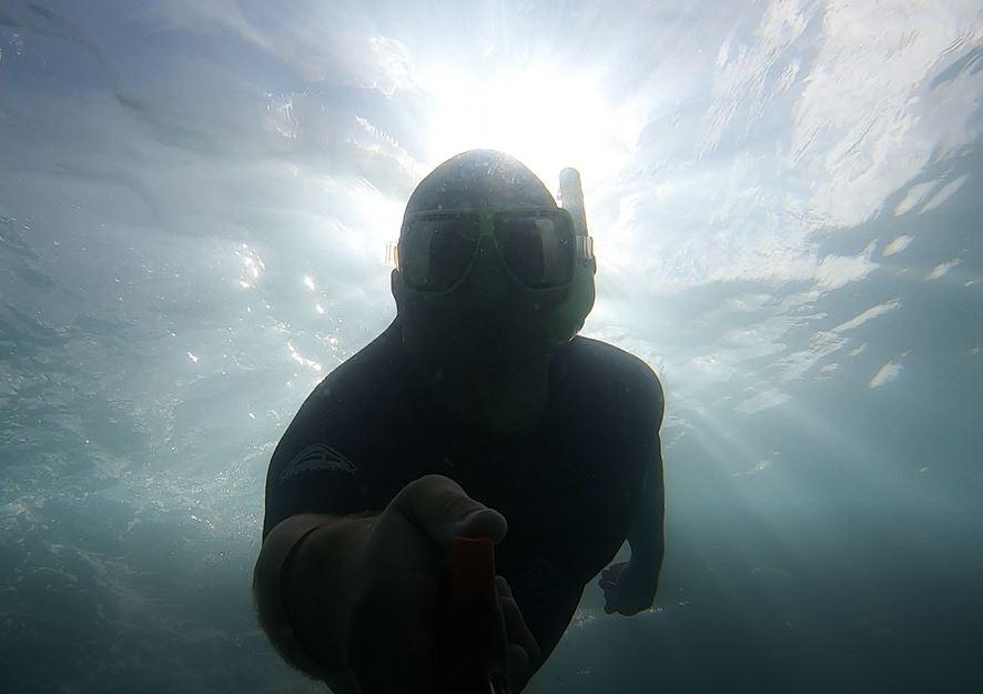 Snorkel  picture