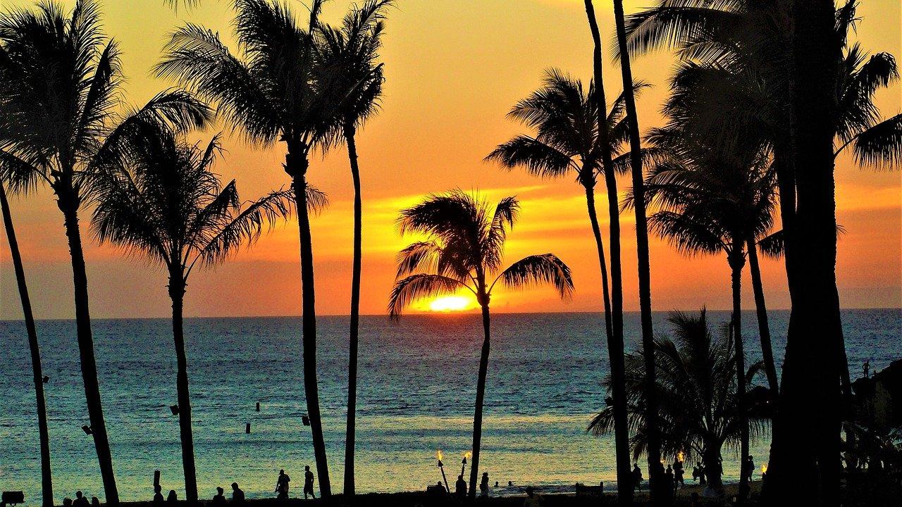 Hawaii Vaccine Passports photo